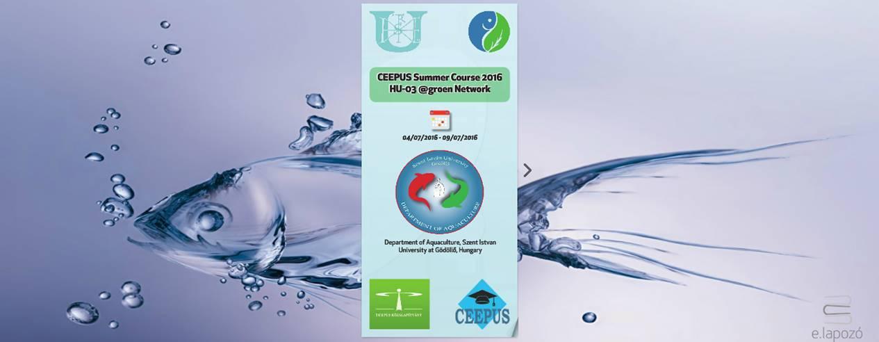 CEEPUS Summer School