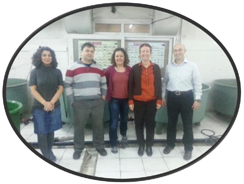Imagen1_Turkey